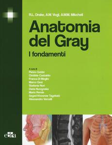 Anatomia del Gray. I fondamenti