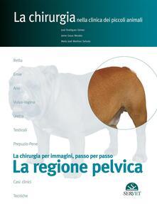 Lpgcsostenible.es La regione pelvica. La chirurgia per immagini, passo dopo passo Image