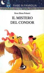 Foto Cover di Il mistero del condor, Libro di Regina Zampieri, edito da San Paolo Edizioni