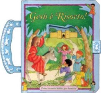 Libro Gesù è risorto! Primi incontri biblici per bambini Moira McLean , Emily Tuttle