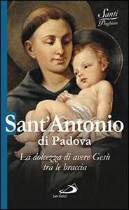 Libro Sant'Antonio di Padova. La dolcezza di avere Gesù tra le braccia Natale Benazzi