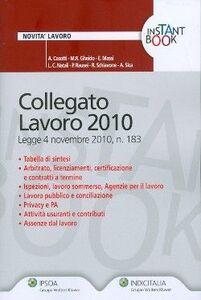 Libro Collegato lavoro 2010