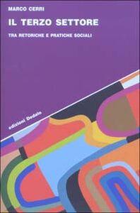 Foto Cover di Il terzo settore. Tra retoriche e pratiche sociali, Libro di Marco Cerri, edito da Dedalo