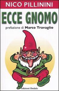 Foto Cover di Ecce gnomo, Libro di Nico Pillinini, edito da Dedalo