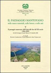 Il paesaggio mantovano nelle tracce materiali, nelle lettere e nelle arti. Atti del Convegno di studi (Mantova, 5-6 dicembre 2006). Vol. 5: Il paesaggio mantovano dall'Unità alla fine del XX secolo (1866-2000).