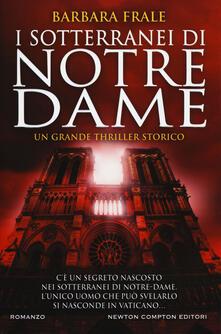 Camfeed.it I sotterranei di Notre-Dame Image