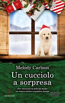 Un cucciolo a sorpresa - Melody Carlson,Clara Nubile - ebook