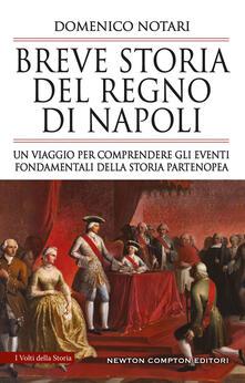 Breve storia del Regno di Napoli. Un viaggio per comprendere gli eventi fondamentali della storia partenopea - Domenico Notari - ebook