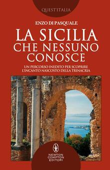 La Sicilia che nessuno conosce. Un percorso inedito per scoprire l'incanto nascosto della Trinacria - Enzo Di Pasquale - ebook