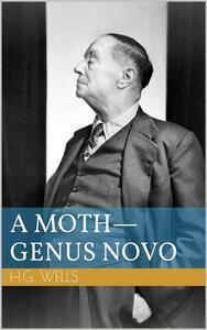 A Moth - Genus Novo