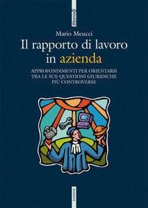 Foto Cover di Il rapporto di lavoro in azienda. Approfondimenti per orientarsi tra le sue questioni giuridiche più controverse, Libro di Mario Meucci, edito da Ediesse