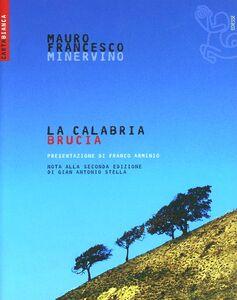 Libro La Calabria brucia Mauro F. Minervino