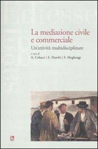 Foto Cover di La mediazione civile e commerciale. Un'attività multidisciplinare, Libro di  edito da Ediesse