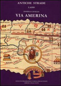 Libro Via Amerina