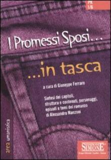 Ipabsantonioabatetrino.it I Promessi sposi Image