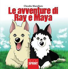 Voluntariadobaleares2014.es Le avventure di Ray e Maya Image