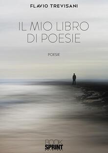 Il mio libro di poesie.pdf