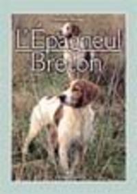 L' L' épagneul breton - Scheggi Massimo - wuz.it