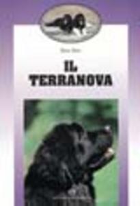 Libro Il terranova Marco Borsi