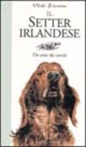 Libro Il Setter irlandese. Un cane da caccia Stefano Vitale Brovarone