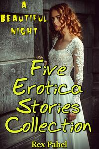 Abeautiful night. Five erotica stories collection