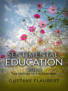 Sentimental education, or The history of a young man. Vol. 1