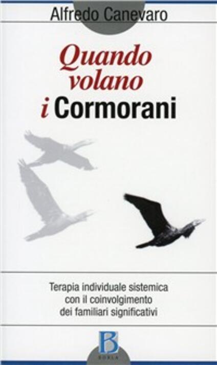 Quando volano i cormorani. Terapia individuale sistemica con il coinvolgimento dei familiari significativi - Alfredo Canevaro - copertina