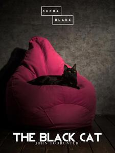 Theblack cat