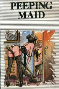 Peeping Maid - Erotic Novel