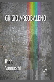 Grigio arcobaleno - Ilario Vannucchi - copertina