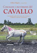 Conoscere i movimenti del cavallo