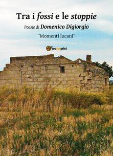 Trai i fossi e le stoppie - Domenico Digiorgio - copertina