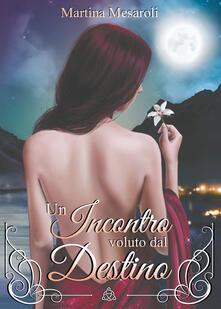 Un incontro voluto dal destino - Martina Mesaroli - copertina
