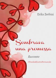 Sembrava una promessa - Erika Zerbini - copertina