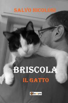 Briscola il gatto - Salvo Nicolosi - copertina