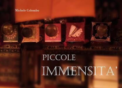 Piccole immensità - Michele Colombo - copertina