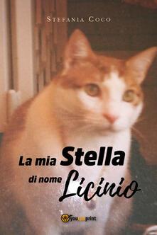 La mia stella di nome Licinio - Stefania Coco - copertina