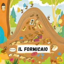 Il formicaio. Ediz. a colori.pdf