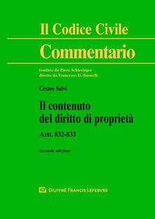 Il contenuto del diritto di proprietà. Artt. 832-833 - Cesare Salvi - copertina