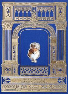 Imitatio vitae. Ediz. italiana e inglese - Marina Cicogna - copertina
