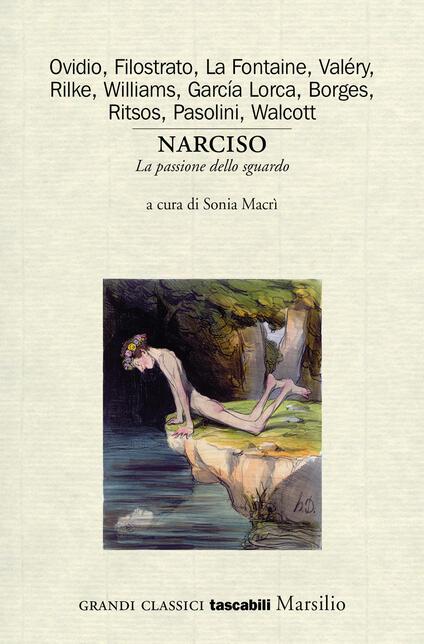 Narciso. La passione dello sguardo. Variazioni sul mito - copertina