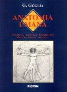Equilibrifestival.it Anatomia. Anatomia umana Image