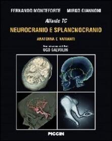 Parcoarenas.it Atlante tc neurocranio e splancnocranio. Anatomia e varianti Image
