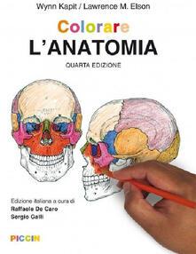 Camfeed.it Colorare l'anatomia Image