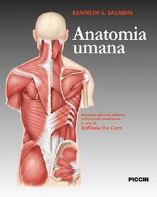 Anatomia umana - Kenneth S. Saladin - copertina