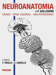 Tegliowinterrun.it Neuroanatomia. Cranio-spazi liquorali-vasi intracranici Image