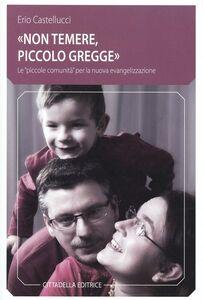 Foto Cover di «Non temere, piccolo gregge». Le «piccole comunità» per la nuova evangelizzazione, Libro di Erio Castellucci, edito da Cittadella