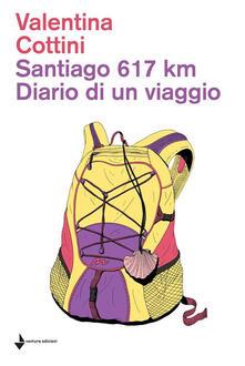 Santiago 617 km. Diario di un viaggio - V. Cottini - ebook