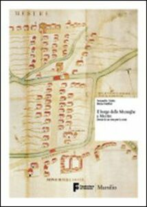 Libro Il borgo delle muneghe a Mestre. Storia di un sito per la città Donatella Calabi , Elena Svalduz