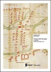 Il borgo delle muneghe a Mestre. Storia di un sito per la città